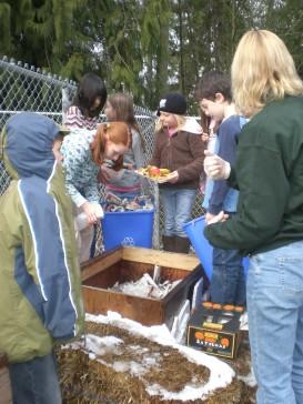 worm bin outdoor