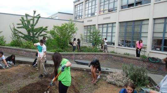 starting-the-garden