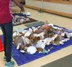 boh-student-sorting-trash-on-a-tarpcropped
