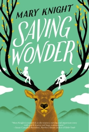 Saving-Wonder_hi-res